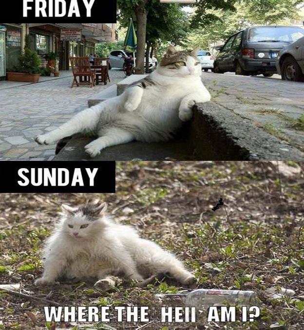 Where the hell am I? Weekend Meme