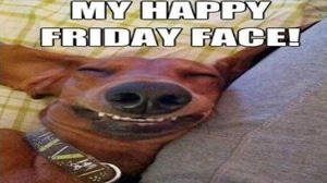 My Friday Happy Face [Funny dog meme]